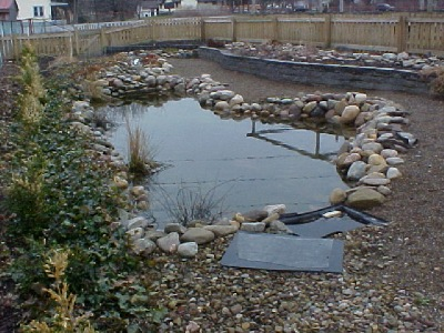 Our demo pond shortly after we completed construction.